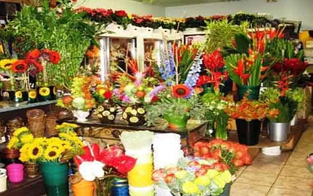 Çiçekçi Dükkanı Açmak - Çiçekçi Dükkanı Nasıl Açılır - Maliyet ve Kar Oranı